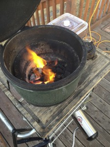 Big Green Egg 225x300